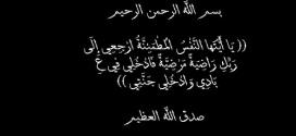 دوت نت تنعي الشيخ محمد الفكى ( صهر ابوذر حسن طه )