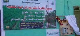 رئيس الجمهورية يزور الحصاحيصا ويفتتح كهربة المشاريع الزراعية والطرق الداخلية