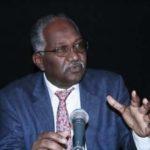 """وفاة العالم السوداني """"دكتور محمد صالح زيادة"""" في حادثة الطائرة المصرية"""